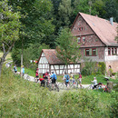 Odenwald Mountain-Bike Tagestour