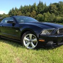 2013 Ford Mustang GT V8 5.0L Cabrio ... 426 PS...RIDE THE PONY!