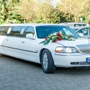 Lincoln Stretchlimousine 8,50 m lang  f�r jeden Anlass